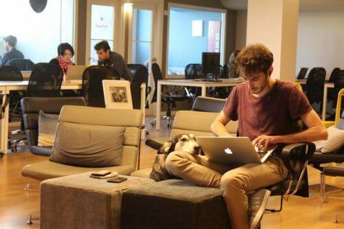 Quiet-work-environment